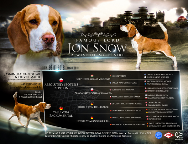 Famous Lord Jon Snow A Wisp of my Desire - Johnny klein